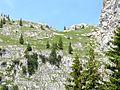 Säuling GipfelanstiegSüd 2012.jpg
