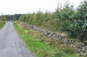 St Padarn's Church, Llanbadarn Fawr - A section of the Roman road, Sarn Helen, in Ceredigion