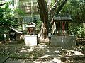 Sasutahiko-jinja setsummasha1.jpg