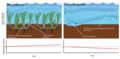 Seagrasses prevent erosion of the seafloor.png