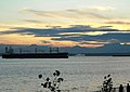 Seattle Sunset (2873789983).jpg