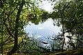 See im Schutzgebiet Alte Leine.jpg