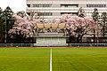 Seikei University (17).jpg