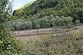 Selo Petrilje 14.jpg