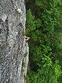 Seneca Rocks climbing - 09.jpg
