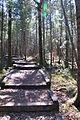 Sentier du CIBRO 02.JPG