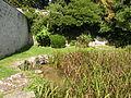 Seraincourt (Val-d'Oise) rueil ruisseau 2.JPG