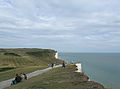 Seven Sisters, Sussex 2010 PD 15.JPG