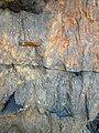 Shatterconed sandstone (Mississagi Formation, Paleoproterozoic, ~2.3-2.4 Ga; Ramsey Lake Road outcrop, Sudbury, Ontario, Canada) 11 (47767054761).jpg
