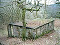 Shelter in the trees - geograph.org.uk - 110845.jpg