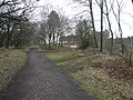 Sherwood Forest - Several paths join Robin Hood Way near to The Centre Tree - geograph.org.uk - 729515.jpg