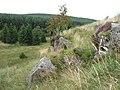 Shiela Crag - geograph.org.uk - 1455500.jpg