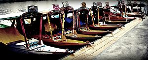Shikara - Shikara in a row at Dal Lake