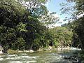Sistema silvopastoril en cuenca alta del río Coapa, Pijijiapan, Chiapas 01.jpg