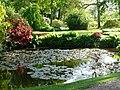 Small pool at Hodnet Hall Gardens - geograph.org.uk - 1470169.jpg