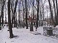 Smolensk Catholic church. View from the Polish cemetery 2.JPG