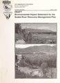 Snake River resource management plan - draft environmental impact statement (IA snakeriverresour00unit).pdf