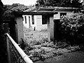 Snapshot, Jungli, Taoyuan, Taiwan, 馬祖新村, 中壢馬祖新村, 隨拍, 中壢, 桃園, 台灣 (15101965492).jpg