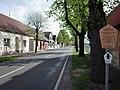 Sollnitz,Naturdenkmal Lindenallee.jpg