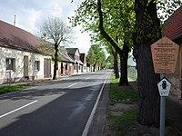Sollnitz, natural monument Lindenallee.jpg