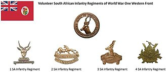 South African Army Infantry Formation - South African Volunteer Infantry Regiments on the Western Front circa World War One