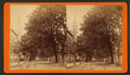 South Broad Street, Savannah, Ga, by Havens, O. Pierre, 1838-1912.png