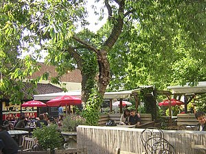 Spaniards Inn - Garden of the Spaniard's Inn on a sunny lunchtime