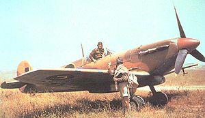 11 Squadron SAAF - Image: Spitfire V Bs 40 Sqn SAAF with pilots at Gabes 1943