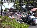 Starr-030705-0032-Schinus terebinthifolius-July 4 Parade-Makawao-Maui (24010196743).jpg