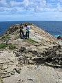 Starr-050404-5377-Digitaria insularis-habitat with Ken and Kim-Mokeehia-Maui (24373966209).jpg