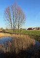 Steenkerke (Veurne) R02.jpg