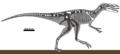 Stokesosaurus langhami remains 01.png