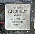 Stolperstein Eli Schneller.jpg