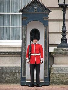 Stra%C5%BCnik przed Pa%C5%82acem Buckingham; Buckingham guard