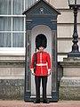 Strażnik przed Pałacem Buckingham; Buckingham guard.JPG