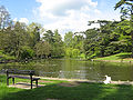Stratford lake.jpg