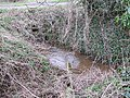 Stream off Fordfield Road (East) - geograph.org.uk - 345276.jpg