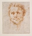 Study of a Man's Head MET DR55.jpg