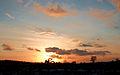 Sunset in Wolfheze (4319817049) (2).jpg