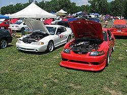 Terminator Mustang Wiki