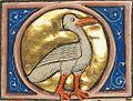 Swan - from a bestiary.jpg