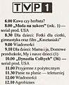 TVprogram.jpg