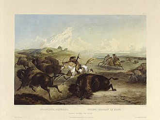 Bison hunting - Illustration of Indians hunting the bison by Karl Bodmer