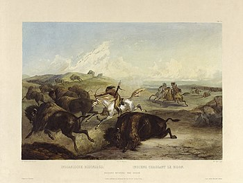 Karl Bodmer: Indians hunting the bison. Tablea...