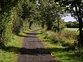 Tarka Trail - geograph.org.uk - 567525.jpg