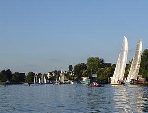 Teddington Lock - Scullers, skiffs and Thames Raters at Raven's Ait on one of the most active stretches of the river