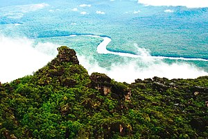 Tepui - View of the Venezuelan Amazon from the top of a tepui.
