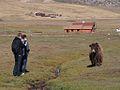 Terelj National Park, Mongolia (11441584604).jpg