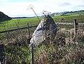The Caddam Stone - geograph.org.uk - 953032.jpg