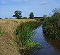 The Lambwath Stream, Benningholme - geograph.org.uk - 962757.jpg